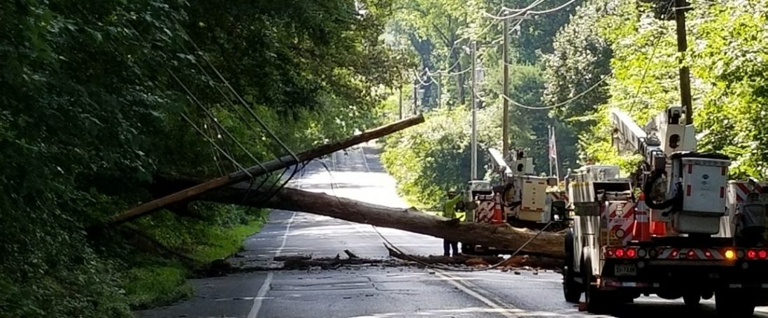 Downed Tree and Wires Block Morning Traffic